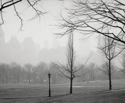 "Untitled, ""Central Park looking south, 1961"""