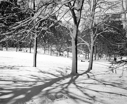 "ntitled, "" Winter in Central Park, 1961"""